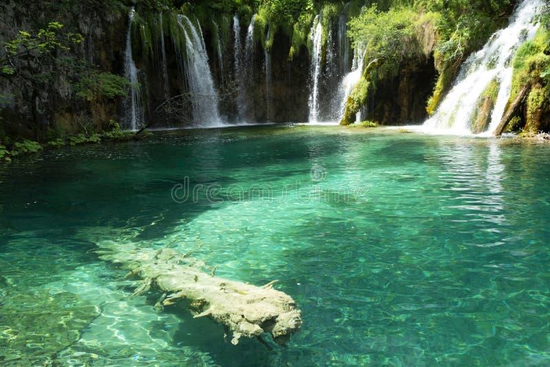 Detalhe de parque nacional de Plitvice imagem de stock