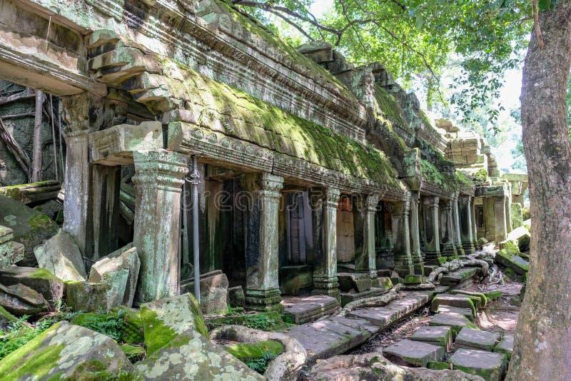 Detalhe de porta antiga em Ta Prohm Angkor Wat Cambodia imagem de stock royalty free