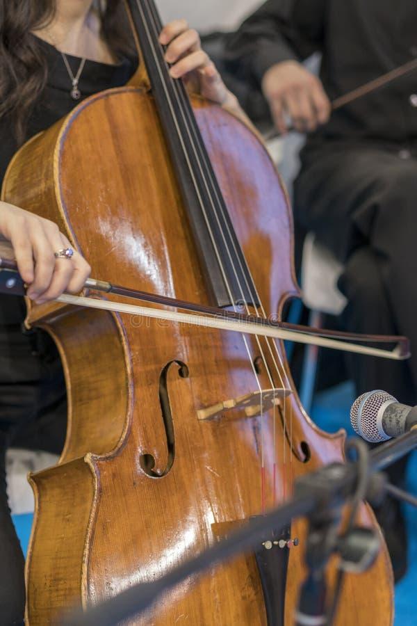 Detalhe de uma mulher que joga um violoncelo Feche acima do violoncelo com curva nas mãos fotografia de stock royalty free