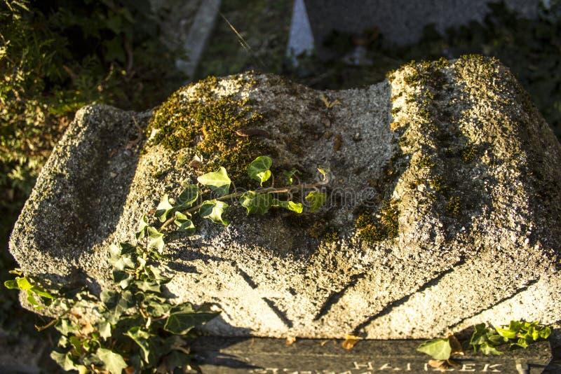 Detalhe de uma sepultura em um cemitério na Croácia fotos de stock royalty free