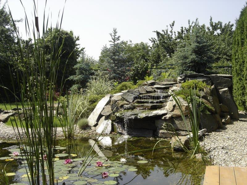 Detalhe do jardim fotos de stock
