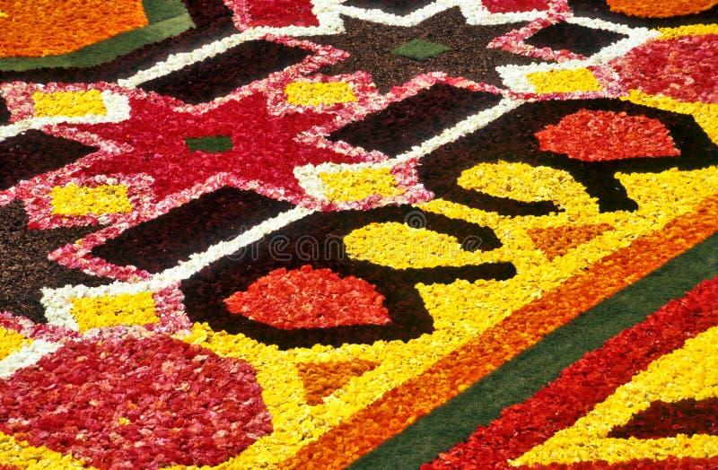 Detalhe do tapete da flor foto de stock
