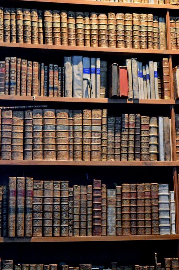 Detalhe interior Viena da biblioteca nacional do palácio de Hofburg imagem de stock royalty free
