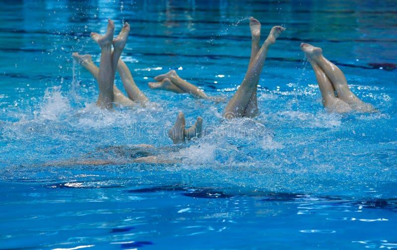 Detalhe local da prática nadadora sincronizado da equipe de Mallorca fotos de stock