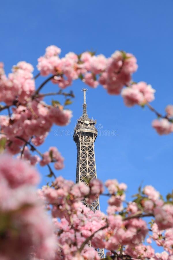 Detalhe parisiense imagens de stock royalty free