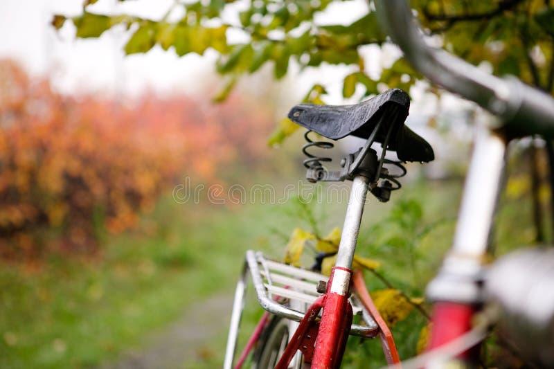 Detalhe retro da bicicleta imagem de stock royalty free