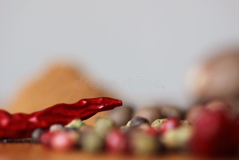 Detalhe vermelho secado da pimenta imagens de stock