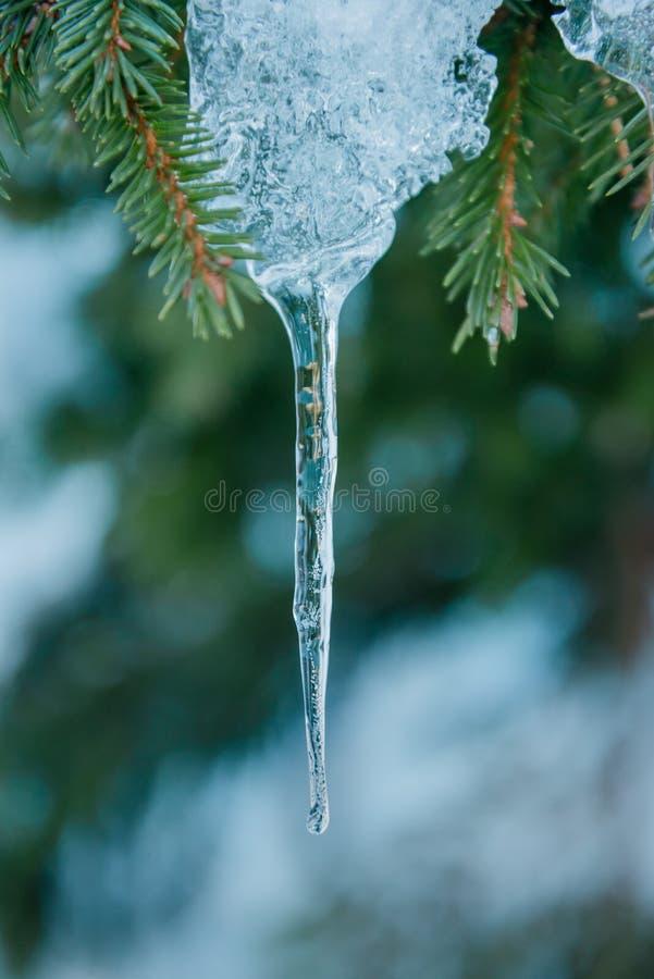 Detalhes da estação do inverno de gelo da estalactite fotografia de stock