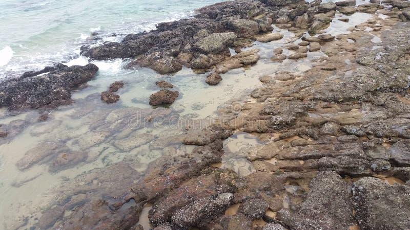 Detalhes da linha costeira foto de stock