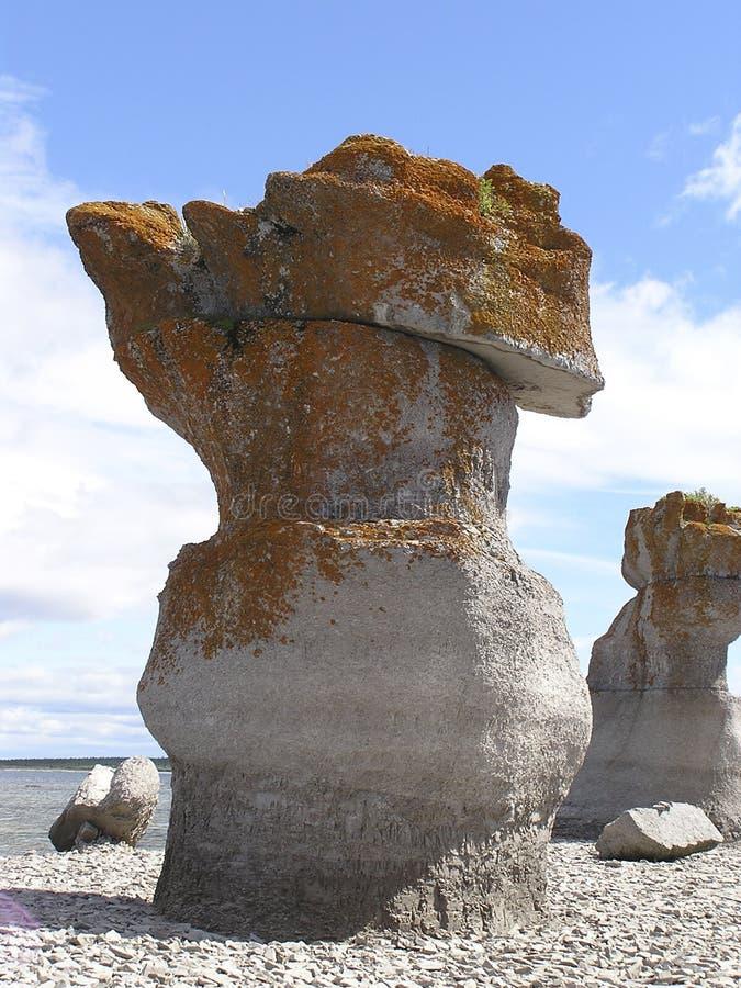 detalhes das ilhotas e dos recifes granitic 1 foto de stock
