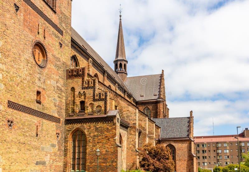 Detalhes de St Petri Cathedral em Malmo imagem de stock