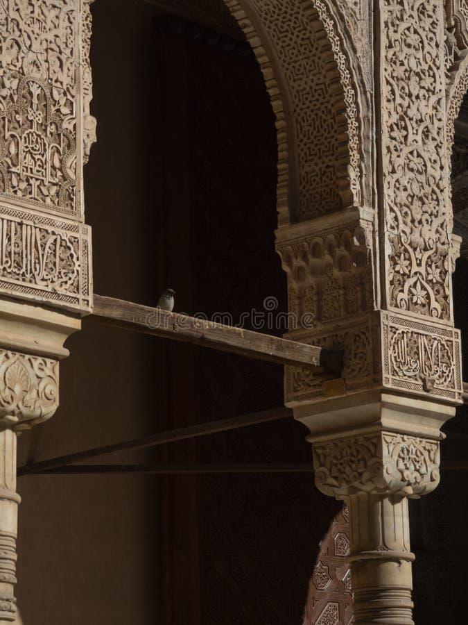 Detalhes dentro do Alhambra, Granada Pátio de los leone fotografia de stock royalty free