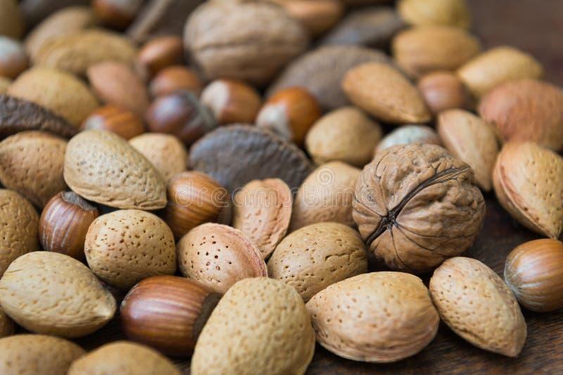Detalhes nuts misturados foto de stock royalty free