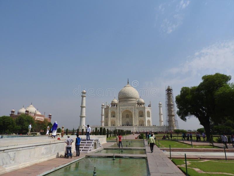 Detalhes Taj Mahal do close-up, local histórico do UNESCO famoso, monumento do amor, o grande túmulo de mármore branco na Índia,  fotografia de stock royalty free