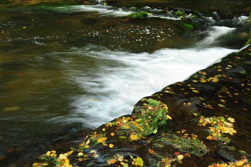 Detalj Autumn River arkivfoto