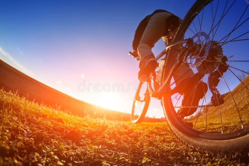 Detalj av cyklistmanfot som rider mountainbiket på utomhus- slinga i solig äng royaltyfri foto