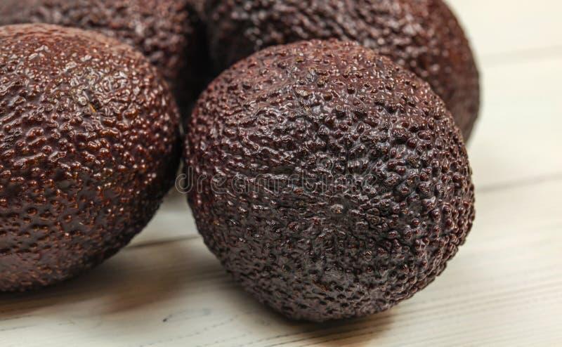 Detalj av den mogna hela bruna avokadot, synlig grov hud, mer avokadon på vita bräden i bakgrund royaltyfria bilder