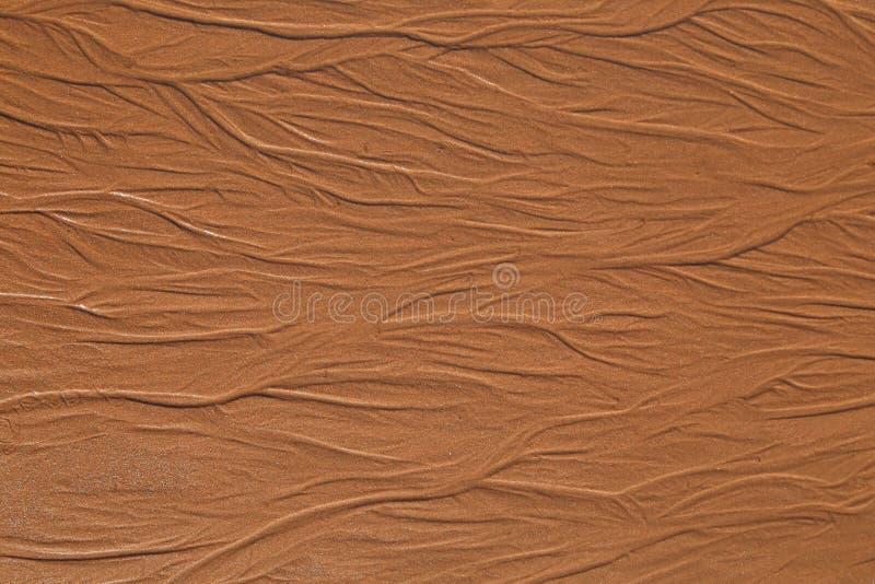 Detalj av den våta sandiga stranden royaltyfri bild