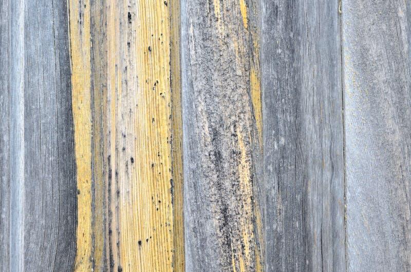 Detalj av en gammal grå dörr arkivfoton