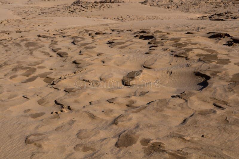 Detalj av en kust- sanddyn, Marocko royaltyfria bilder