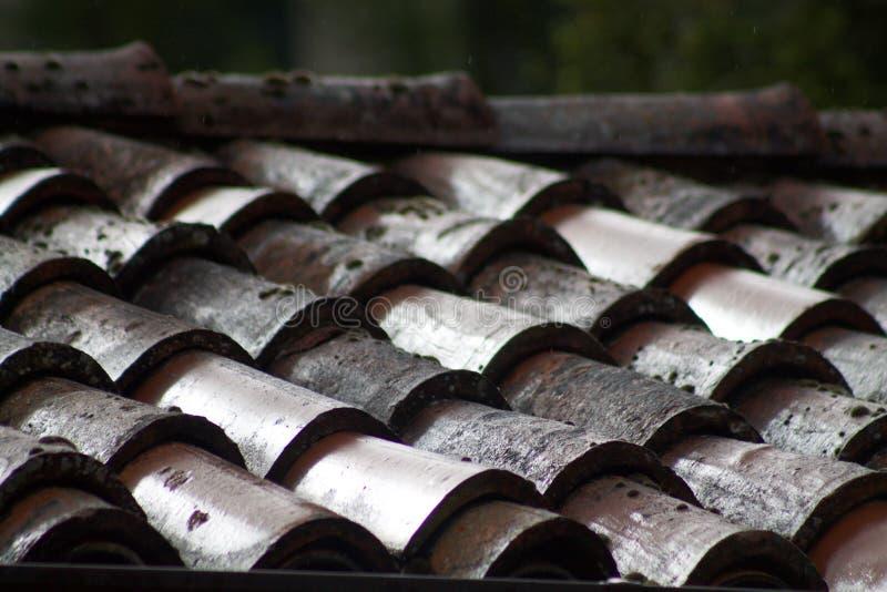 Detalj av en taköverkant i gamla singlar i terrakotta royaltyfria foton