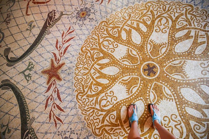 Detalj av golvet för mosaikmodell, havtema, oceanografiskt museum av Monaco, historisk byggnad fotografering för bildbyråer