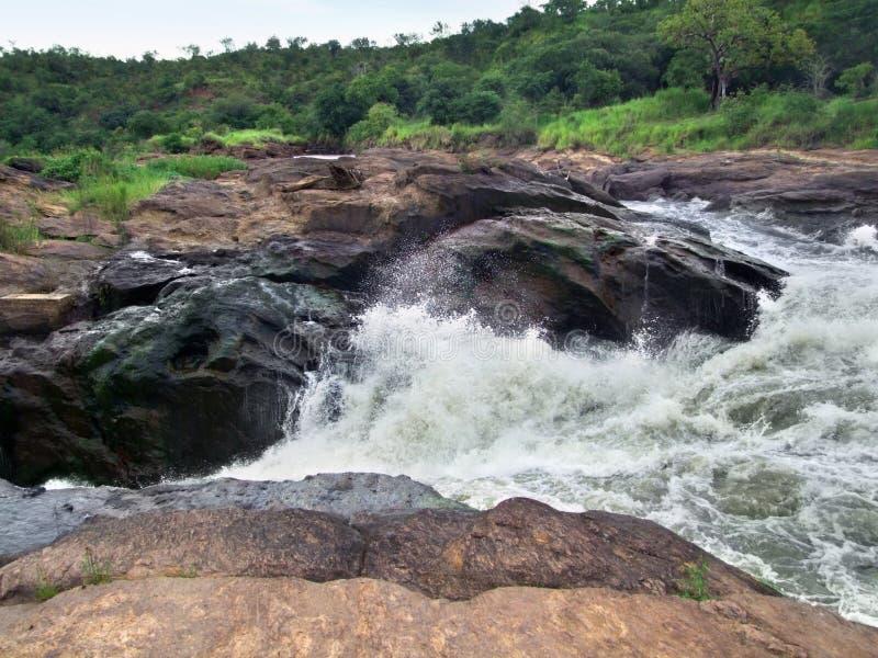 Detalj av Murchisonet Falls royaltyfria foton