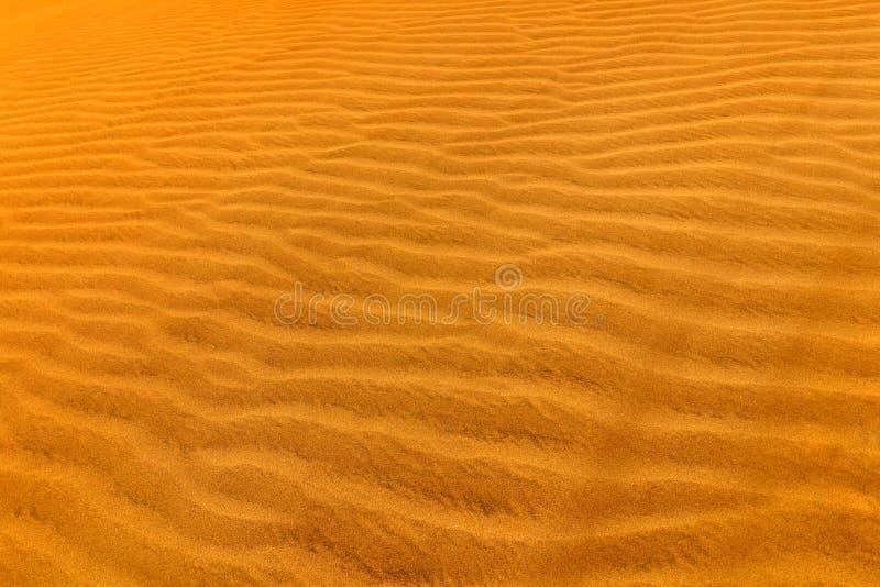 Detalj av sanddyn i öken Torrt landskap för sommar i Afrika Sandvågor i den lösa naturen Dunas Maspalomas, Gran Canaria, Spai royaltyfria foton