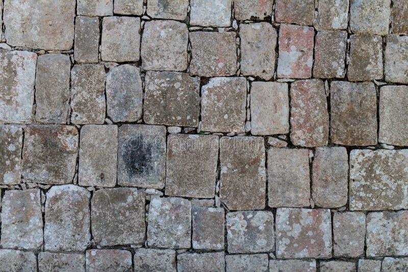 Detalj av väggen i den Mayan arkeologiska platsen Chichen Itza, Mexi arkivfoto