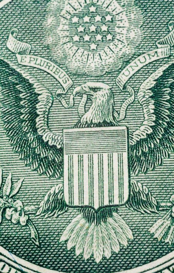 Detalj för dollarmakrodel arkivbilder