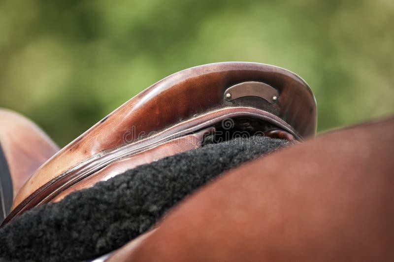 Detalj för engelsk sadel arkivfoto