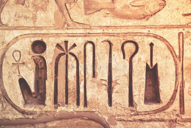 Detalj från tempelväggen i Egypten royaltyfri bild