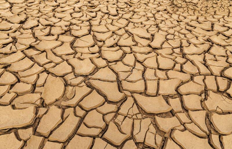 Detalj torkad sprucken jord arkivbild