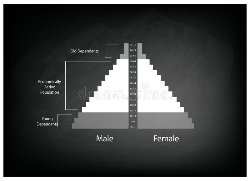 Detaljen av grafer för befolkningpyramider beror på ålder stock illustrationer