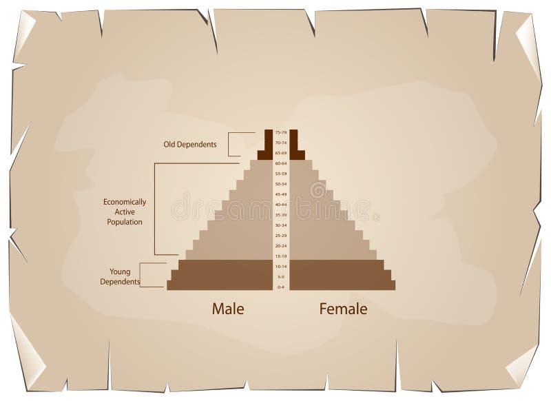 Detaljen av grafer för befolkningpyramider beror på ålder vektor illustrationer