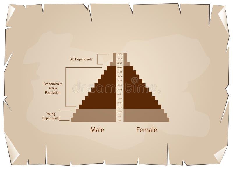 Detaljen av grafer för befolkningpyramider beror på ålder royaltyfri illustrationer