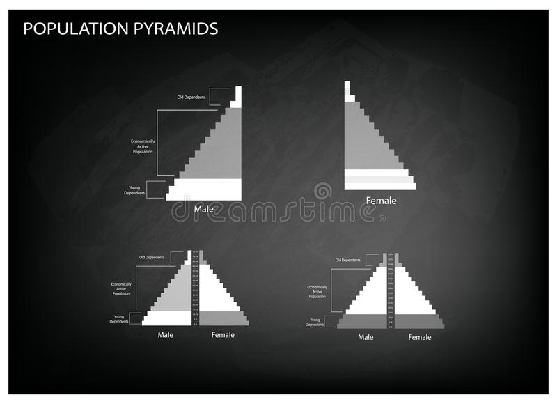Detaljen av grafer för befolkningpyramider beror på ålder och könsbestämmer stock illustrationer