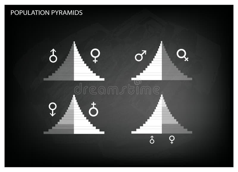 Detaljen av grafer för befolkningpyramider beror på ålder och könsbestämmer royaltyfri illustrationer