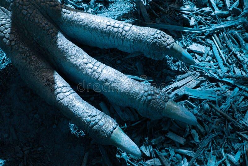Detaljen av jordluckrare AV en förhistoriaödla - dinosaurie - ROVFÅGEL I den blåa världen royaltyfri fotografi