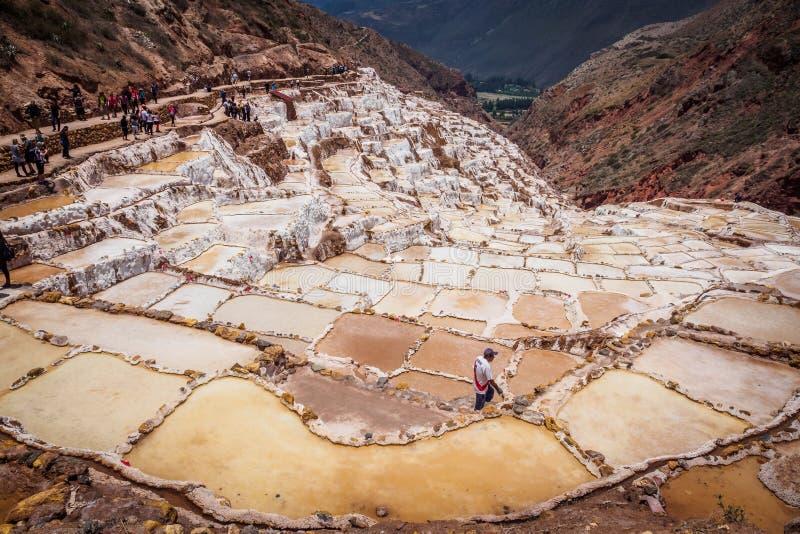 Detaljen av saltar terrasser i saltar pannor av Maras, n?ra Cusco arkivbilder