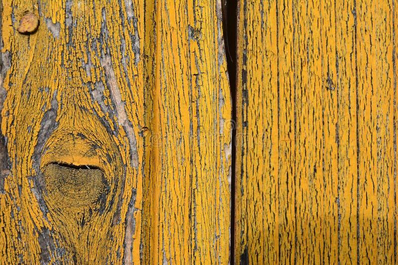 Detaljen från gammal guling målade, trädörrar royaltyfri fotografi