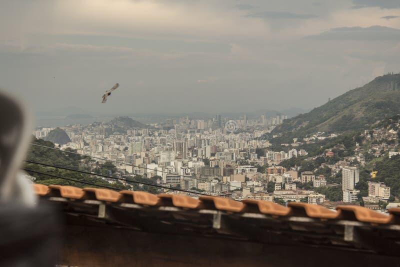 Detaljer av den Catrambi favelaen i Rio de Janeiro - Brasilien royaltyfria bilder