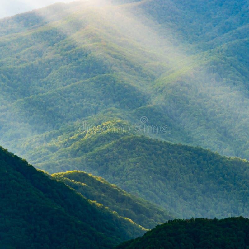 Detaljer av gröna berglutningar med solstrålar royaltyfria foton