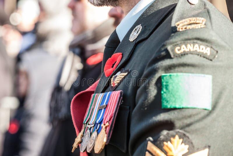 Detaljer av likformign av kanadensisk arm?marktrupper med de minnevallmo och medaljerna som bakifr?n ses royaltyfri fotografi
