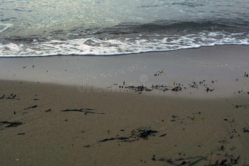 Detaljer för havskust sand vatten arkivbilder