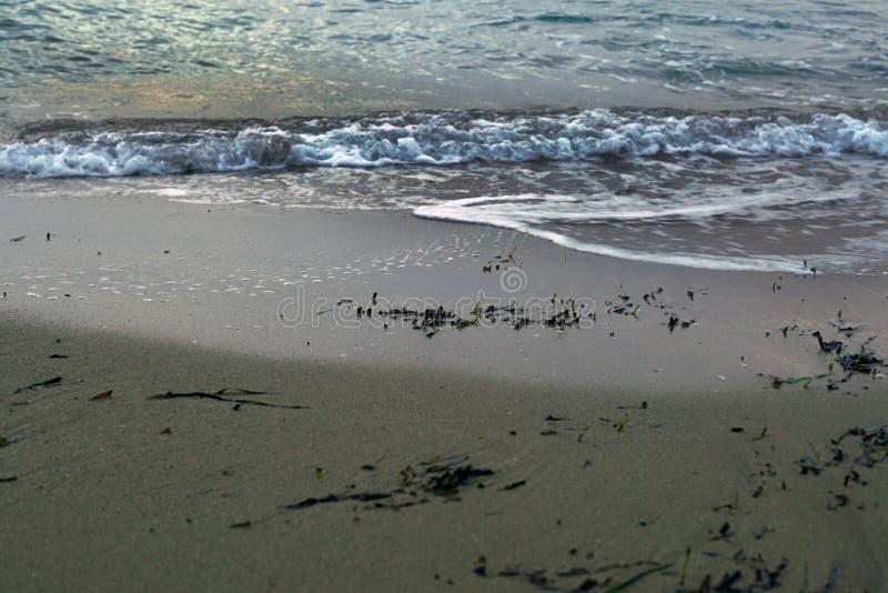 Detaljer f?r havskust sand vatten royaltyfria bilder