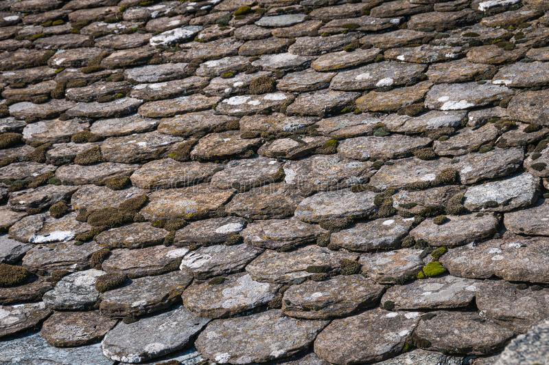 Detaljer om det gamla skiffertaket, med moss, Frankrike royaltyfri fotografi
