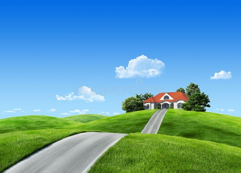 detaljerad äng för grönt hus 7000px mycket vektor illustrationer