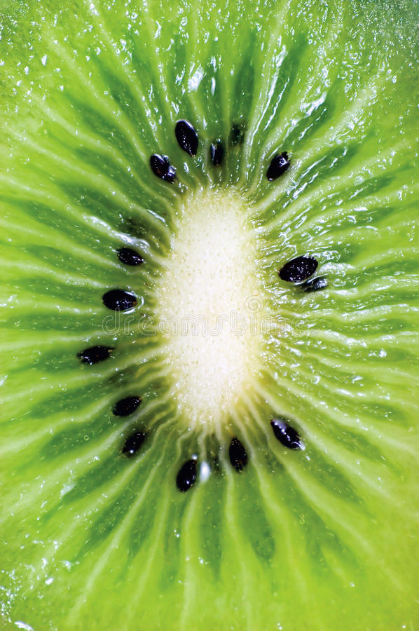 Detaljerad Kiwi Fruit Cut Cross Section makro, stor detaljerad vertikal bakgrundsmodellCloseup royaltyfria bilder