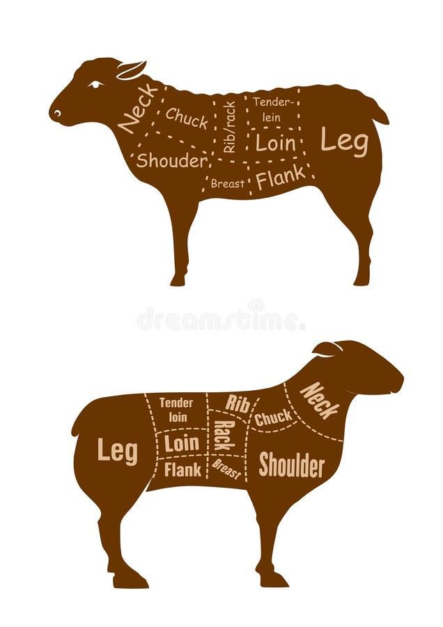 Detaljerat diagram för lamm- eller fårköttslaktaresnitt vektor illustrationer